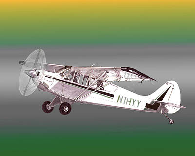 A1a Husky Aviat Airplane Art Print