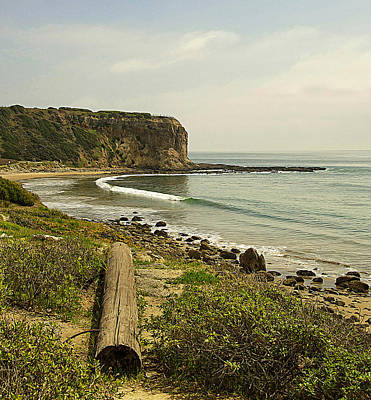 Abalone Cove Coastline Art Print by Ron Regalado