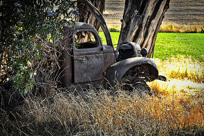 Photograph - Abandon Truck by Ron Roberts