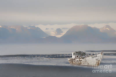 Photograph - Abandoned Boat In Kachemak Bay by Dan Friend