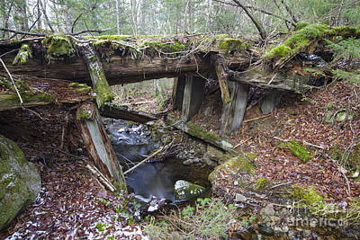 Concord Photograph - Abandoned Boston And Maine Railroad Timber Bridge - New Hampshire Usa by Erin Paul Donovan