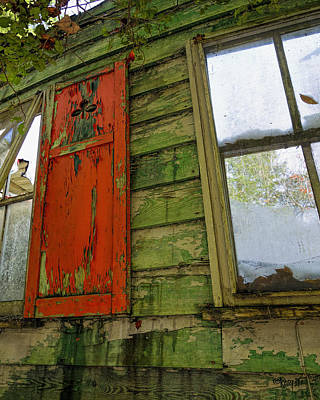 Photograph - Abandoned Cabin Elkmont - Coming Down Clover by Rebecca Korpita