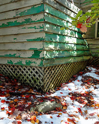 Photograph - Abandoned Cabin Elkmont - Fall Leaves Peeling Paint by Rebecca Korpita