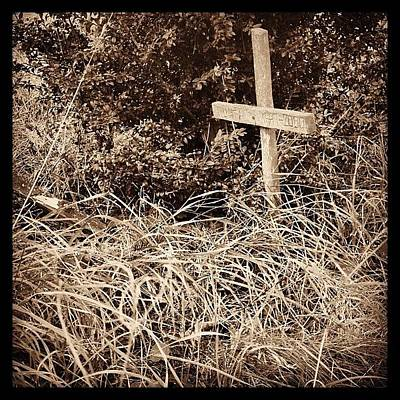 Iphone 4s Photograph - Abandoned Dog's Grave #grave #cross by Jan Kratochvil