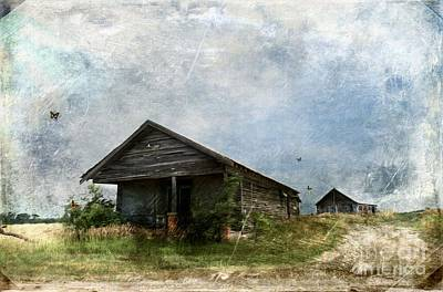 Photograph - Abandoned Farm Home - Kansas by Liane Wright