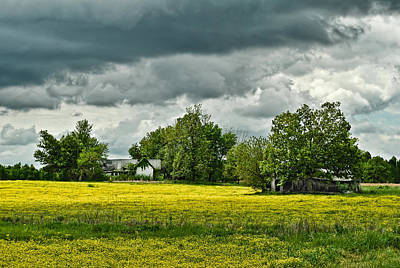 Abandoned Farm In Spring Art Print