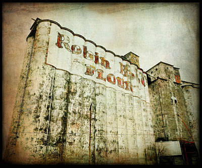 Photograph - Abandoned Grain Elevator  by Ann Powell