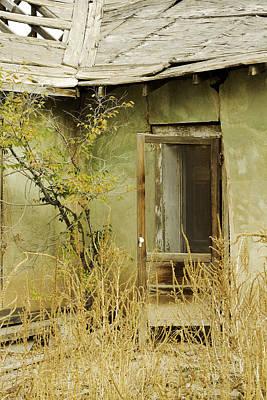 Abandoned Green House-001 Art Print by David Allen Pierson
