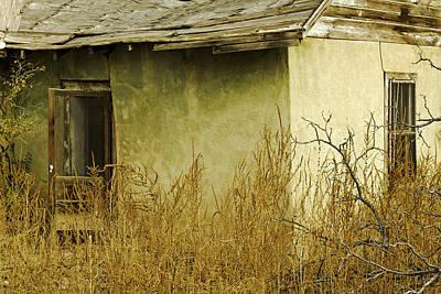 Abandoned Green House-003 Art Print by David Allen Pierson