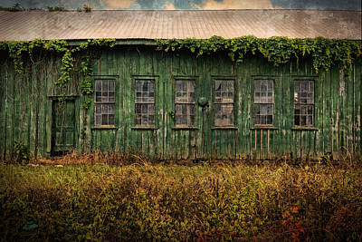 Photograph - Abandoned Green Sugar Mill Building Dsc04353 by Greg Kluempers