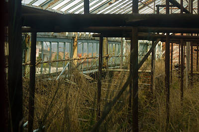 Photograph - Abandoned Greenhouse by Tikvah's Hope