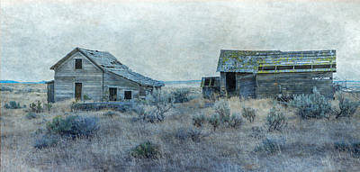 Photograph - Abandoned Homestead by Angie Vogel