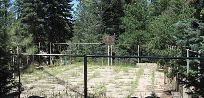 Photograph - Abandoned Hoops by Tammy Sutherland