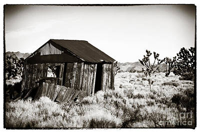 Photograph - Abandoned In Mojave by John Rizzuto