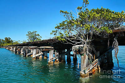 Photograph - Abandoned Railroad At Boca Grande 1 by Carmen Del Valle