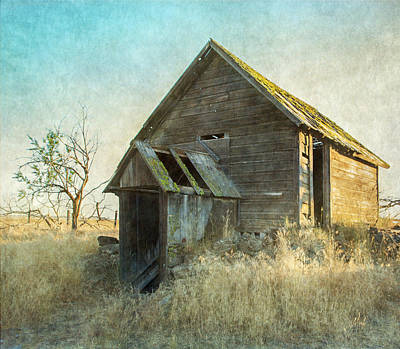 Photograph - Abandoned Root Cellar by Angie Vogel