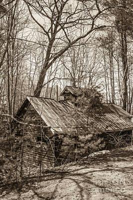 Photograph - Abandoned Sap House by Alana Ranney