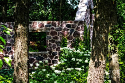 Photograph - Abandoned Spring House by Ms Judi