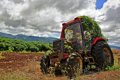 Oahu Photograph - Abandoned Tractor by Marcia Colelli