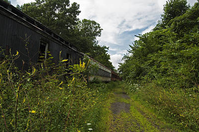 Photograph - Abandoned Train Cars by Elsa Marie Santoro