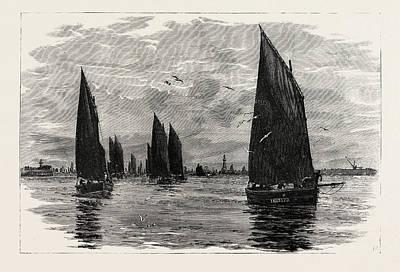 Herring Drawing - Aberdeen, Departure Of The Herring Fleet by English School