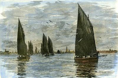 Herring Drawing - Aberdeen The Herring Fleet 1885 Uk by English School