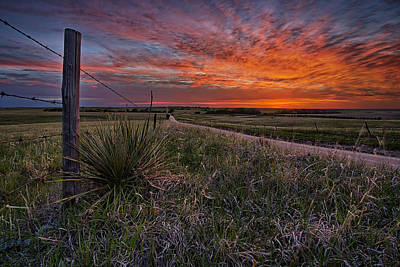 Barbed Wire Fences Photograph - Ablaze by Thomas Zimmerman