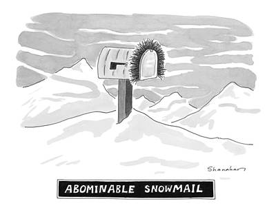 Snowy Drawing - Abominable Snowmail by Danny Shanahan