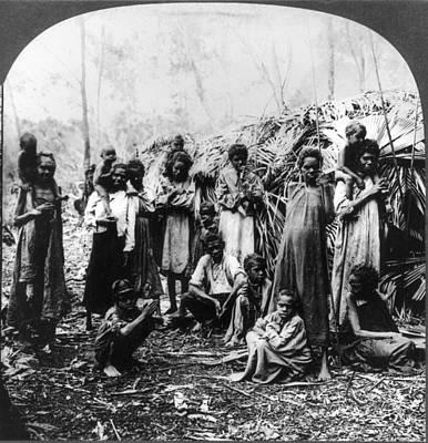 Australian Native Painting - Aboriginal Australians by Granger
