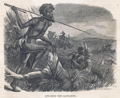 Kangaroo Drawing - Aboriginals Hunting Kangaroo by Mary Evans Picture Library