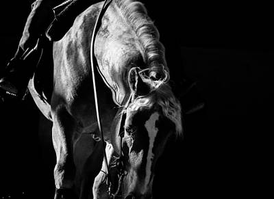 Horse Photograph - About The Moment by Vadim Boytsov