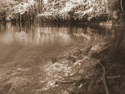 Photograph - Above And Below Sepia 2 by Sheri McLeroy