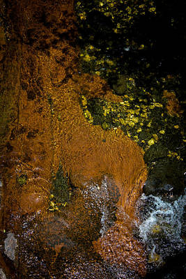 Photograph - Above Oak Creek No 1 by Dave Garner