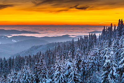 Rhodope Mountains Photograph - Above Ocean Of Clouds by Evgeni Dinev