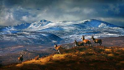 Above Strathglass Art Print