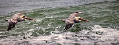 Pelican Photograph - Above The Ocean by David Millenheft