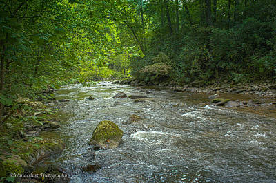 Photograph - Abram's Creek Gsmnp by Paul Herrmann
