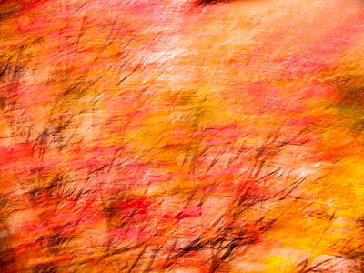 Photograph - Abstract-1 by Charles Hite