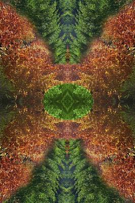 Abstract 164 Art Print by J D Owen
