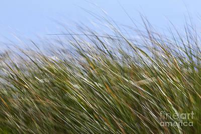 Abstract Movement Photograph - Abstract 18 by Tony Cordoza