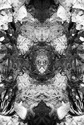 Digital Art - Abstract Ash by Steve Ball