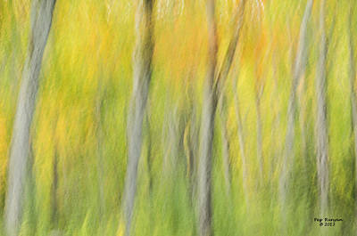 Photograph - Abstract Autumn Forest by Peg Runyan