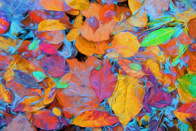 Photograph - Abstract Autumn Leaves by Gary Slawsky