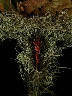 Manger Mixed Media - Abstract Christmas Manger by Julianne Felton