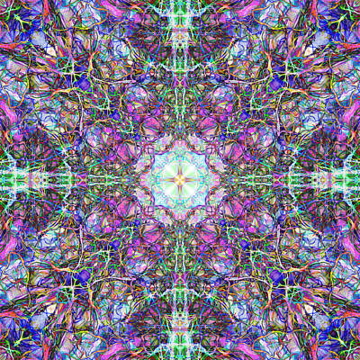 Abstract Digital Art - Abstract Colorful Mandala Weave by Phil Perkins