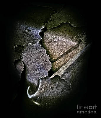 Photograph - Torn Rose Petal by Walt Foegelle