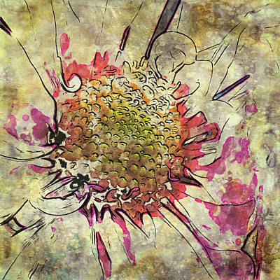 Photograph - Abstract Daisy  by Mary Underwood