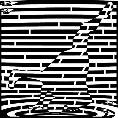 Hop Drawing - Abstract Distortion Break Dance Maze by Yonatan Frimer Maze Artist