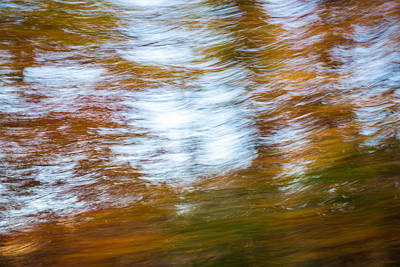 Photograph - Abstract Fall 11 by Joye Ardyn Durham