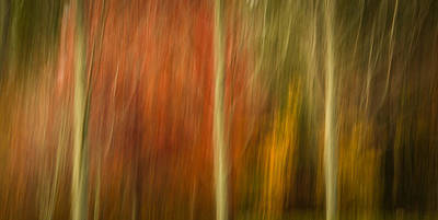 Photograph - Abstract Fall 15 by Joye Ardyn Durham